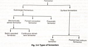 Types of fermenter