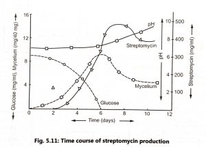 Production of Streptomycin and Product Recovery