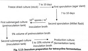 Production of Tetracycline