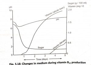 Production of Vitamin B12 (Cobalamin)