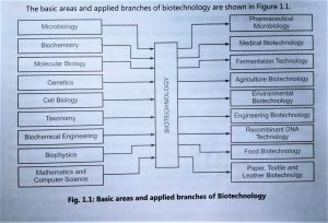 Applied Branches of Biotechnology