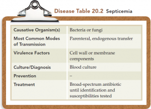 Septicemias: Symptoms,causative agents,diagnosis and treatment