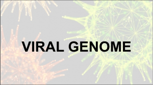 VIRAL GENOME PPT