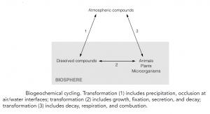 Prokaryotes and their environment