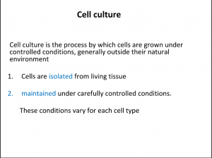 Mammalian Cell Culture-PPT