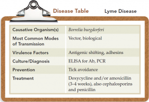 Lyme Disease| Overview