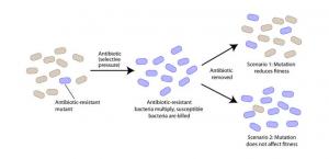 Genetic Drug Resistance