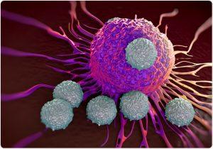 T-Lymphocyte: Development and Differentiation