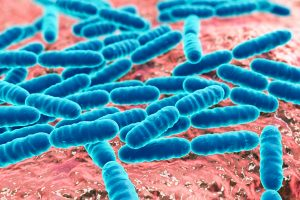 Characteristics of microbes in industrial-microbiology