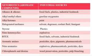 XENOBIOTICS  Overview