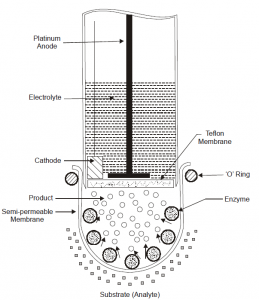 Types Of Electrodes Used In Biosensors