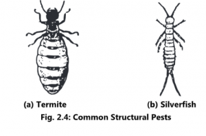 Introduction and Scope of Pests