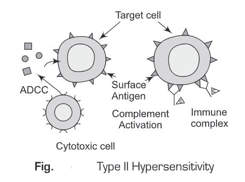 Hypersensitive Reactions