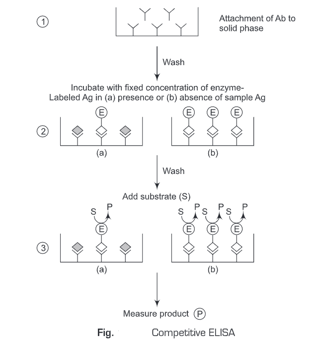 Enzyme Linked Immunosorbent Assay and Its Types